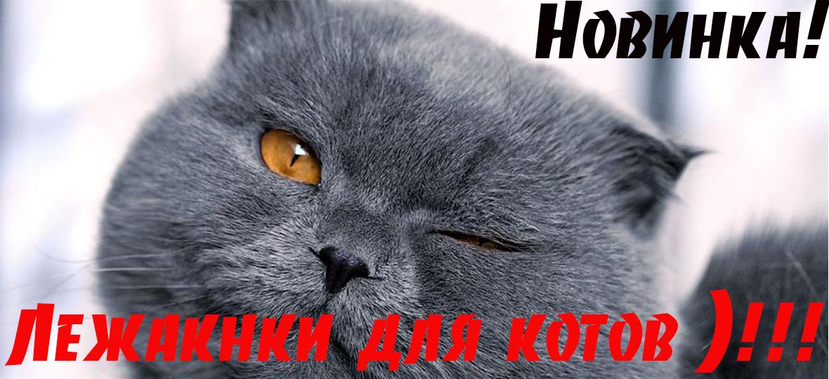Купити лежанки для котів та собак