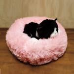 Лежанка для котов/собак 40 см (Розовый)